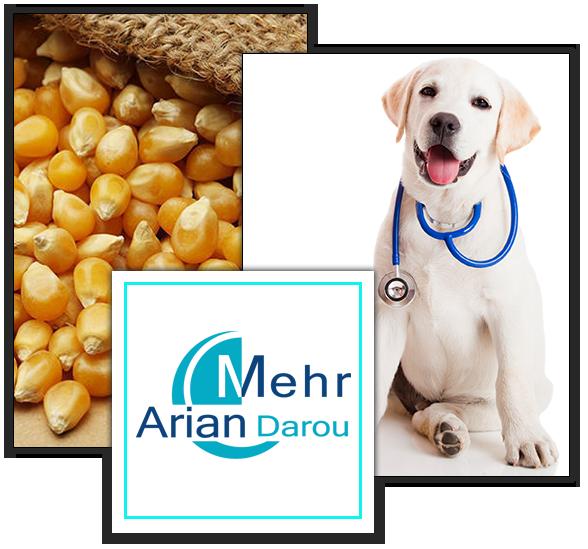 Mehr Arian Darou